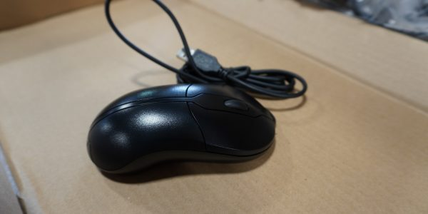 Picture of Mice