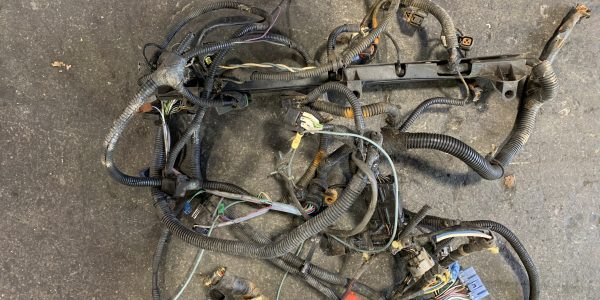 Picture of Wiring Harness