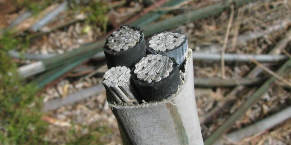Picture of Insulated Aluminum Wire